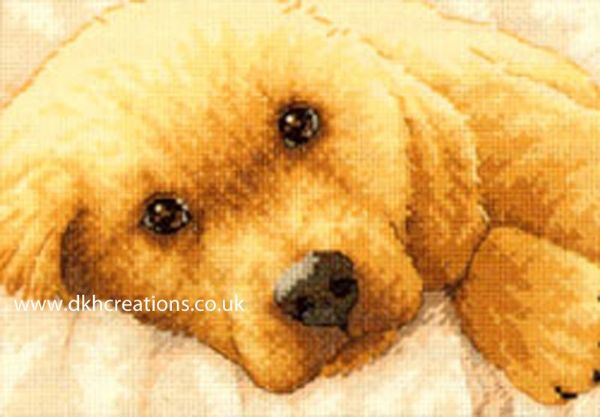 Golden Puppy Dog  Cross Stitch Kit